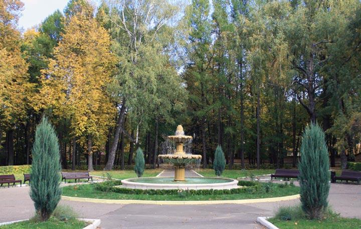 Парк в усадьбе Ершово