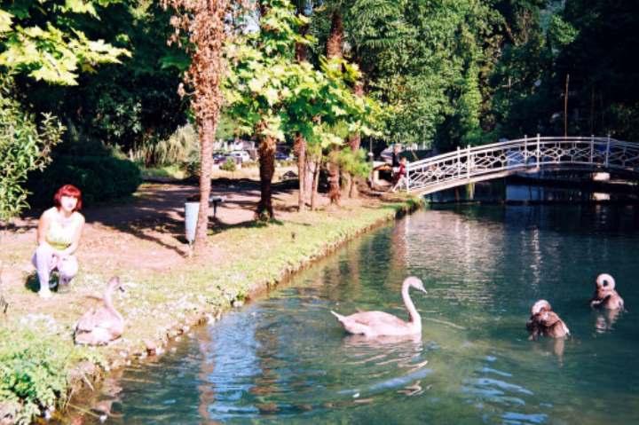 Парк города Новый Афон