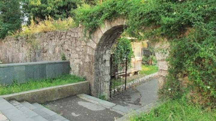 Парк в городе Гагры