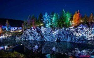 Разноцветная подсветка деревьев