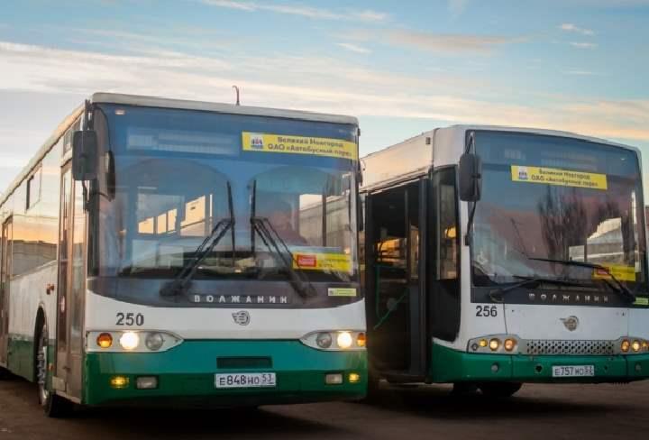 Автобусы на Ростов