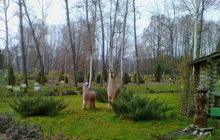Парк в Старом Осколе