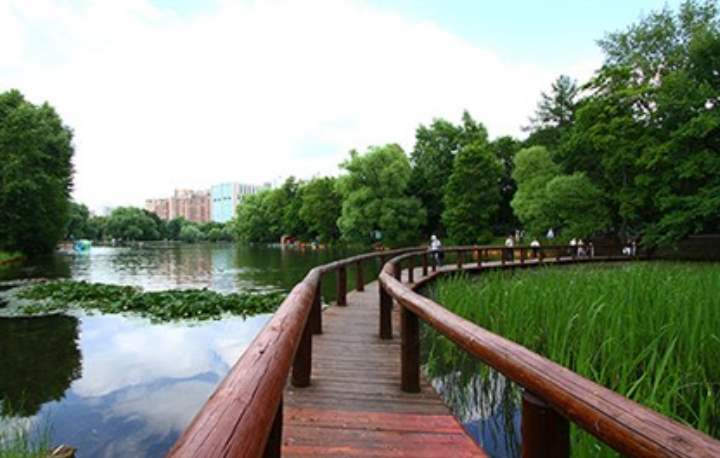 Водоемы Воронцовского парка в москве