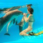 Фотосессии с дельфинами
